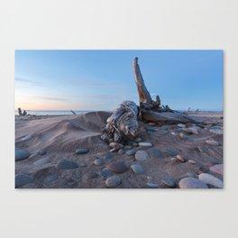 Whitefish Point Beach on Lake Superior Canvas Print