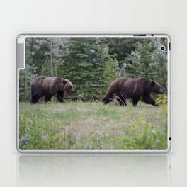 Grizzly bears in the Rocky Mountains Laptop & iPad Skin