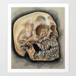 Skull Color Pencil  Art Print