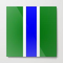 TEAM COLORS 10...BLUE,GREEN Metal Print