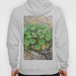 Life on a stone wall Hoody