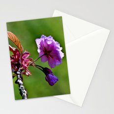 Pink Blossoms of Spring Stationery Cards