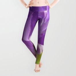 Purple Crocus 229 Leggings