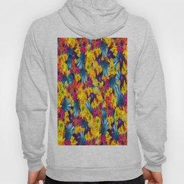Rainbow Daisies Hoody