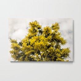 Beautiful Yellow Tree Metal Print