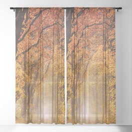 Autumn Fall Forest Path -  Nature Landscape Photography Sheer Curtain