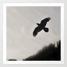 Raven Corvid Bird Northwest Mist Fog Forest Beach Landscape Oregon Art Print