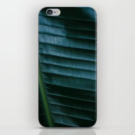 Botanical photography print | Dark green tropical leaf of a palm | Jungle Wanderlust art iPhone Skin