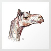 camel Art Prints featuring Camel by Ursula Rodgers
