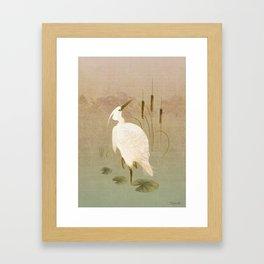 White Heron in Bulrushes Framed Art Print
