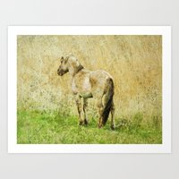 pony Art Prints featuring pony by URS|foto+art
