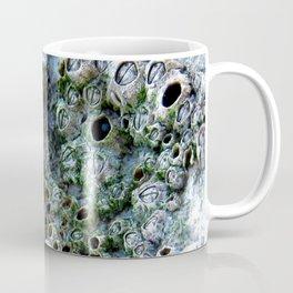 Nacre rock with sea snail Coffee Mug