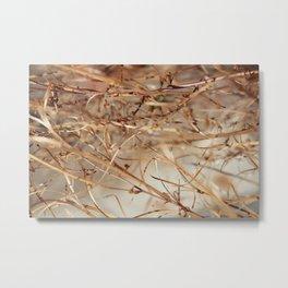 Nature's Tangles Metal Print