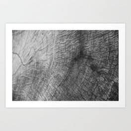 Wood Pattern Art Print
