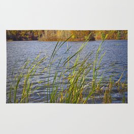 Hall Lake in Autumn Rug