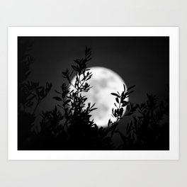 Full Moon Leaves Art Print