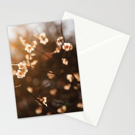 Japanese Plum Blossoms Stationery Cards