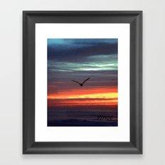 Black Gull by nite Framed Art Print