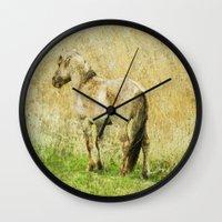 pony Wall Clocks featuring pony by URS|foto+art
