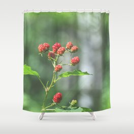Blackberry dressed in red Shower Curtain