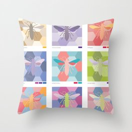 color schemes poster Throw Pillow