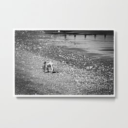 Treasure hunting Metal Print