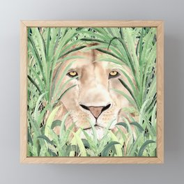 Lion staring through savanna grass, watercolor art.  Framed Mini Art Print