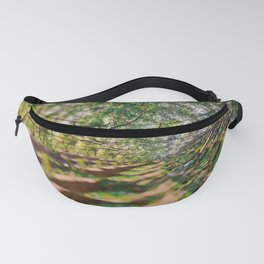 iterations iii Fanny Pack