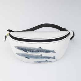 Blainville´s beaked whale Fanny Pack
