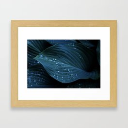 Hosta Leaves with Water Droplets Framed Art Print