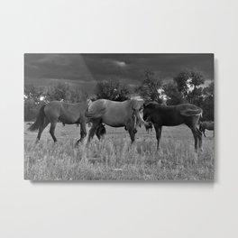 Three Ponies Metal Print