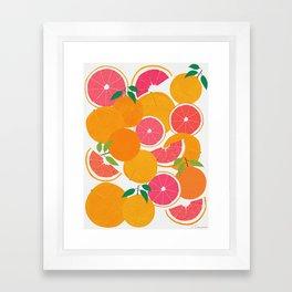 Grapefruit Harvest Framed Art Print