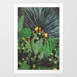 Wild Blooms Art Print
