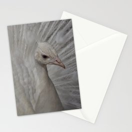 Paon blanc Stationery Cards