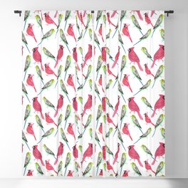 Birds in complementary color scheme- Budgies and cardinals Blackout Curtain