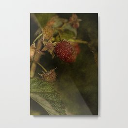 wild berries #5 Metal Print