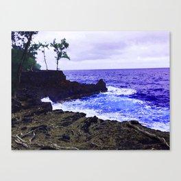 Hawaii Surf Canvas Print