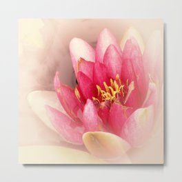 Pink Waterlily Pastel Metal Print