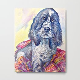Dog and Car Blanket Metal Print