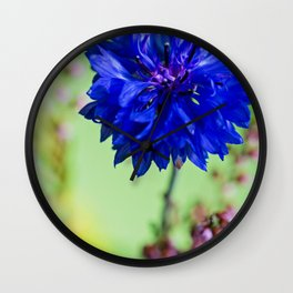 Beauty of blue cornflower Wall Clock