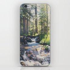 a mountain stream ... iPhone Skin