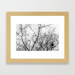 Nature in black and white Framed Art Print