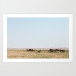 Horse Huddle Art Print