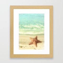 VINTAGE STARFISH Framed Art Print