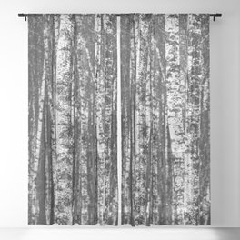 Birch | Sheer Curtain