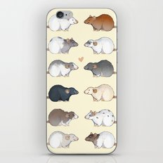 Rat colors and markings  iPhone & iPod Skin