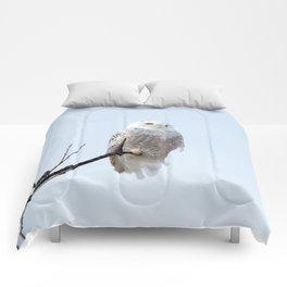 Lofty Vision (Snowy Owl) Comforters