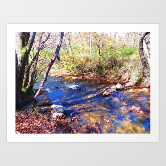 Skip Creek Art Print