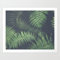 fern Art Prints featuring fern by elle moss