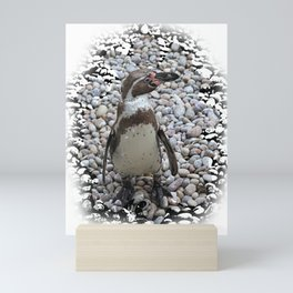Humboldt penguin portrait Mini Art Print